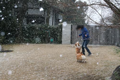 2012-0202雪と3ショット