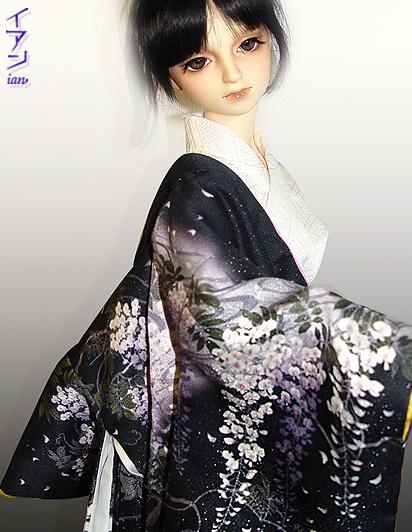 kaifuji1.jpg