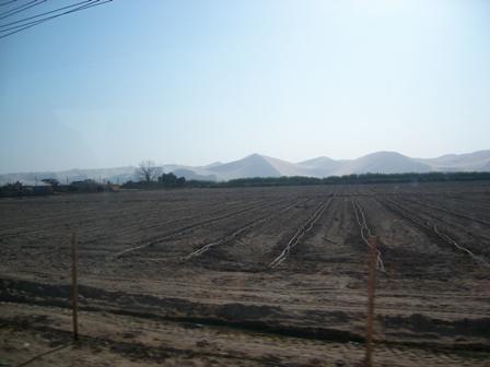 広い農地の向こうに砂山 日本にはない風景だなぁ