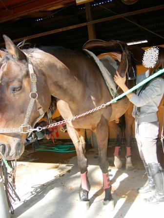 ①馬装を全て取る
