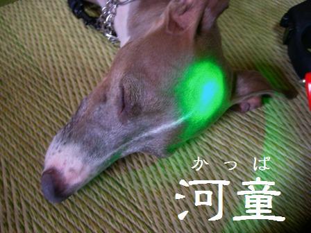 ライターについていた緑のライトでカスタマイズ