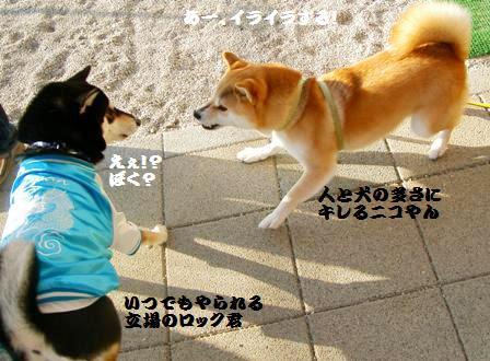 ロック君&ニコちゃん