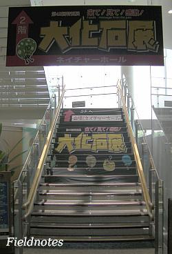 「大化石展」会場への階段