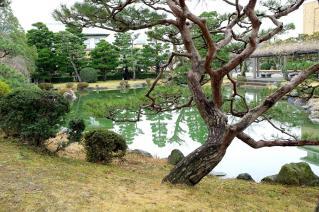 120121okazaki013.jpg