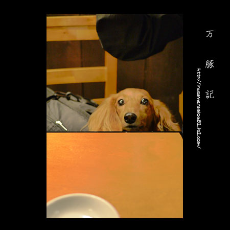 cafe_123_07.jpg
