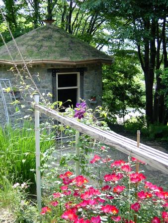 小屋とバラ