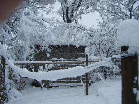 雪で太くなった洗濯ロープ