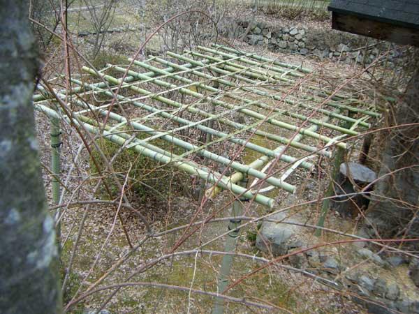 上から見た竹パーゴラ
