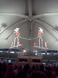 4 circus 3