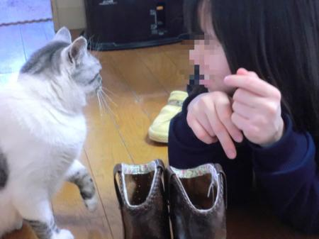 繝「繧カ繧、繧ッ繝サnono縺ィmeru_convert_20120319093935