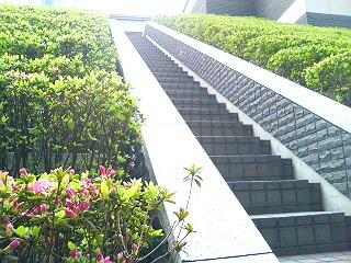 20060416005909