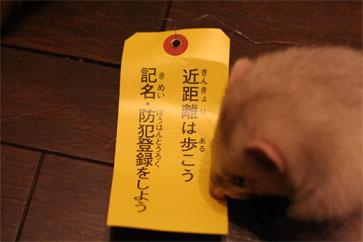 jitennsha3.jpg