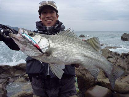 2010 4 4 ヒラスズキ 003 re