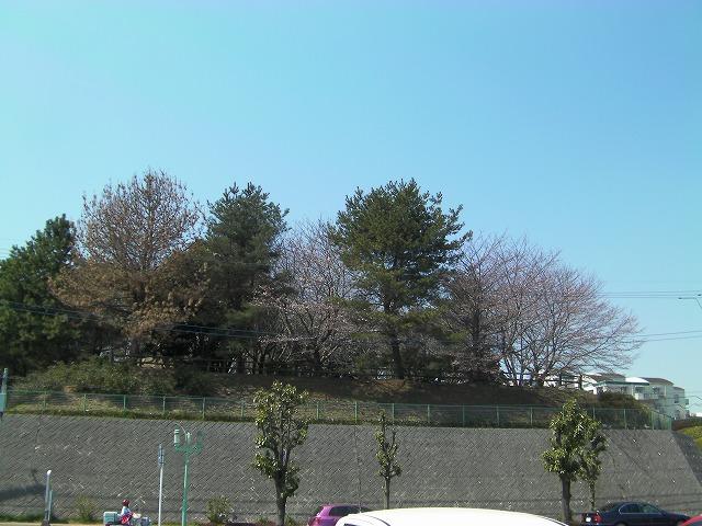 s-3`-11年0411