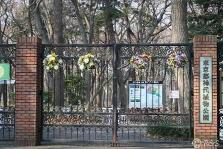神代植物園IMG_4685-1