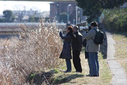 野川のカメラマン2IMG_5961