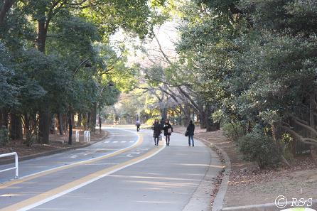 駒沢公園02IMG_6486
