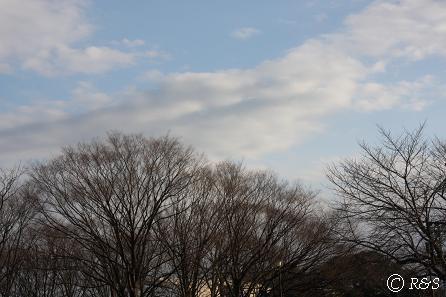 駒沢公園09IMG_6502