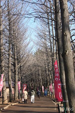 羽根木公園5IMG_7213