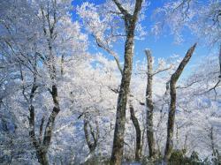 雪景色冬_convert_20120201134045