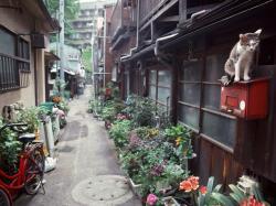 東京町並み昔_convert_20120210121520