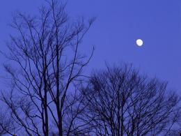風景空月景色_convert_20120217095227