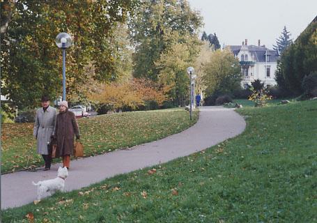 緑の芝にはさまれた道を、向こうから夫婦、こちらから白い犬