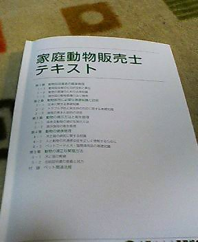 20061209181106