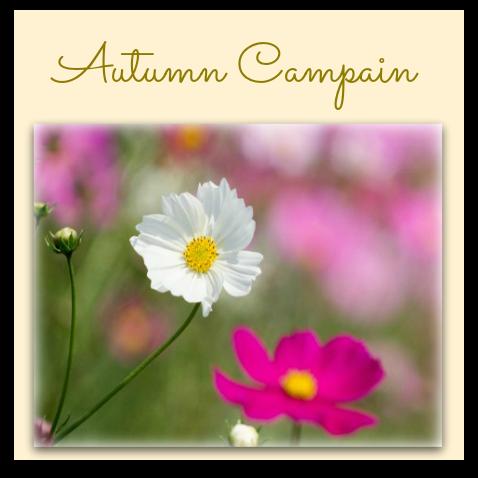 autumnキャンペーン2