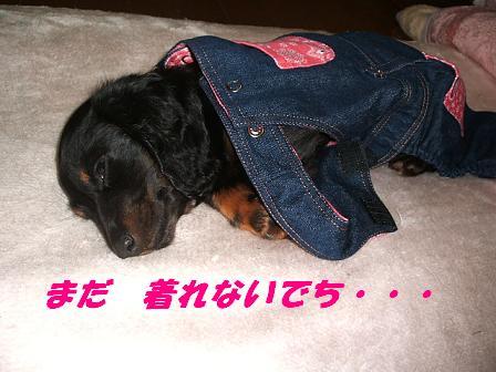 お洋服♪ 010