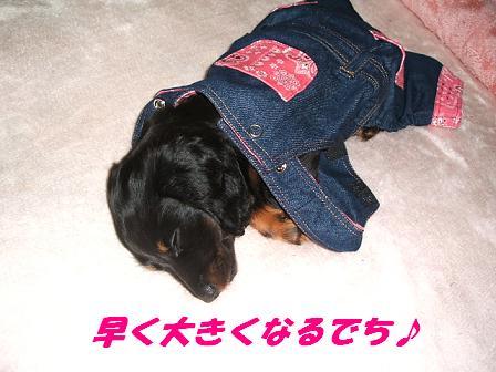 お洋服♪ 011