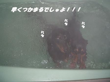 お風呂♪ 008