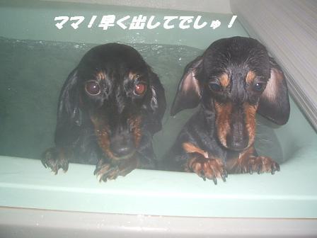 お風呂♪ 013