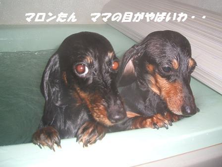 お風呂♪ 015