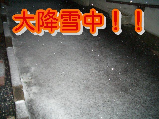 大降雪中!!