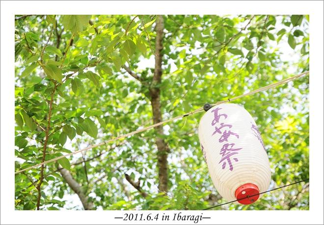 20110604-17.jpg
