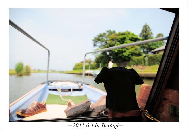 20110604-4.jpg