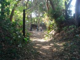 新井城の堀と土塁縮小版