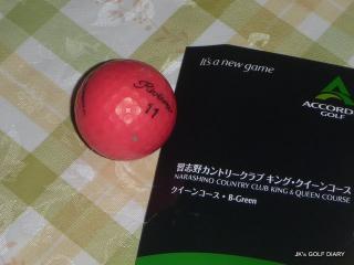 P1060638.jpg