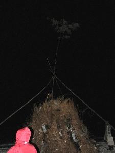 20080113_1.jpg