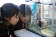熊本市動植物園で
