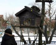 秋田市大森山動物園で