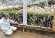 姫路市本町の姫路市立動物園で