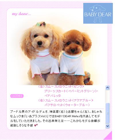 BABY DEAR2