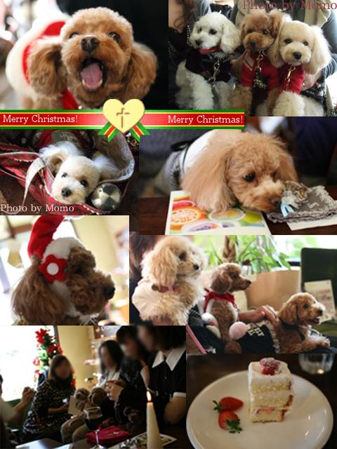 クリスマス会1216