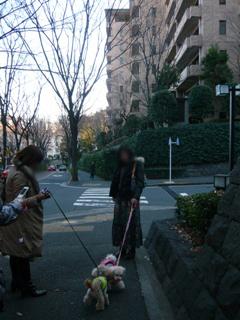 お散歩0127