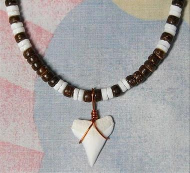 shark tooth 5mm Coco