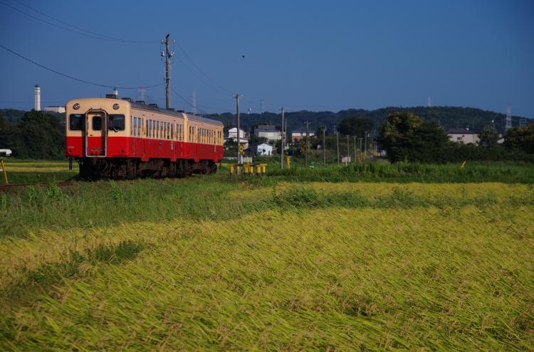 2013年08月27日~31日 川原湯温泉 高岡・宇奈月旅行 202
