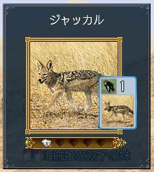 080113_jyakkaru.jpg
