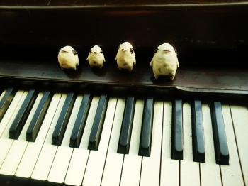 ピアノとボウヤ
